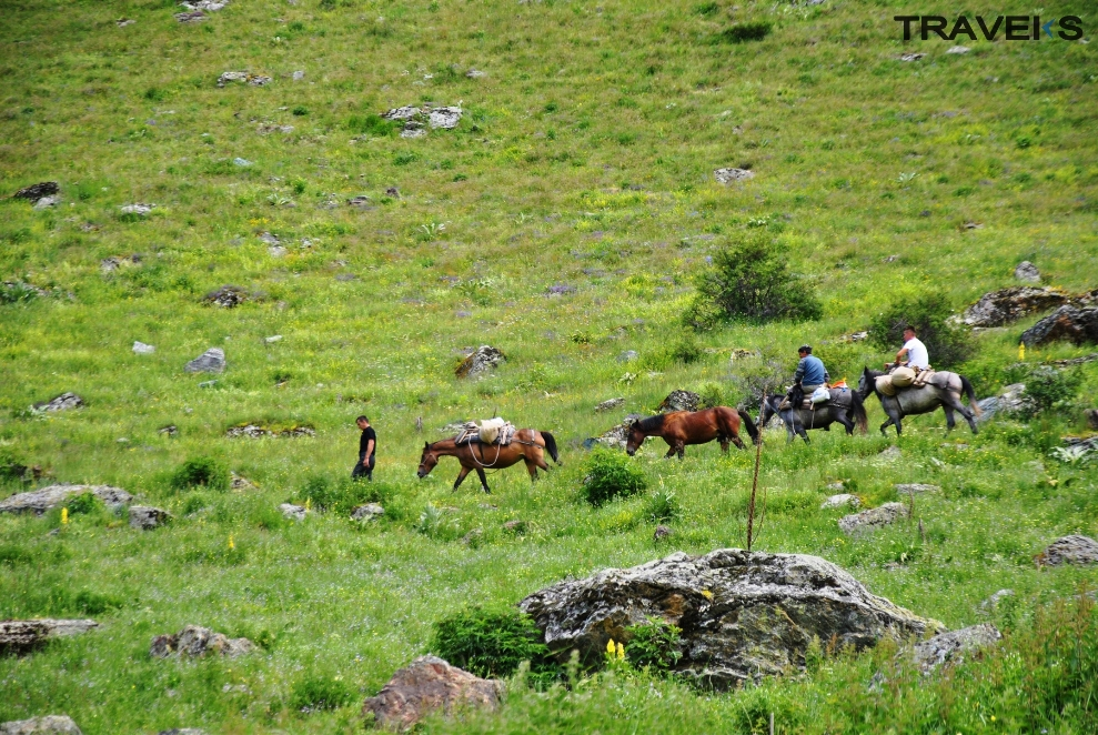 1 Day - Horse riding in Brod